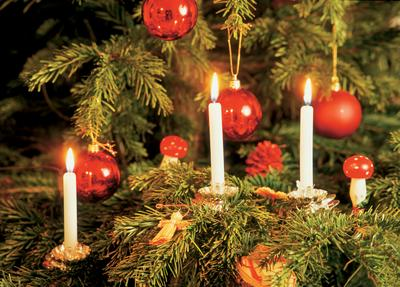 Candles on Christmas Trees | 365+ Things I Love About France