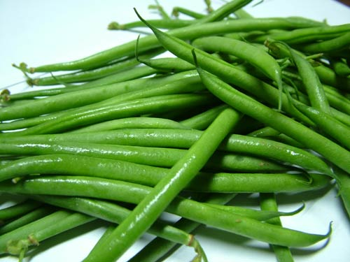 French-beans-Paris