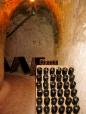 champagne-reims-france2.jpg