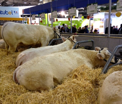 salon-l'agriculture-paris5.jpg