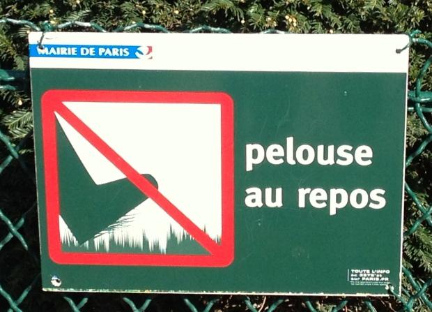 pelouse-au-repos-resting-grass-paris.jpg