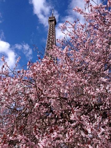 Eiffel-Tower-Springtime3.jpg