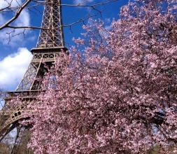 Eiffel-Tower-Springtime2.jpg