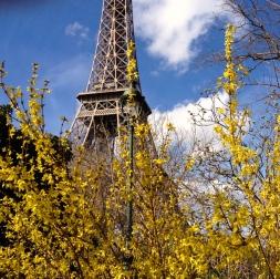 Eiffel-Tower-Springtime1.jpg