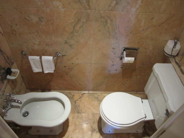 Ritz_bathroom_public.jpg