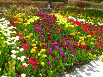 giverny_flowers.jpg