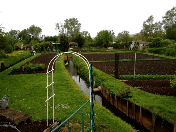 bourges_marais_gardens.jpg