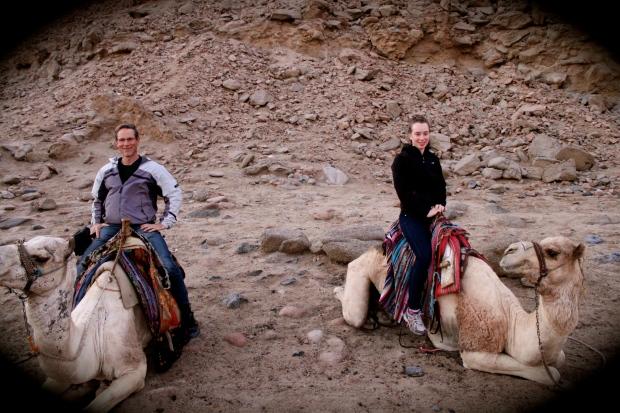 camels_egypt.jpg