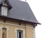 deauville_cats_rooftops2.jpg