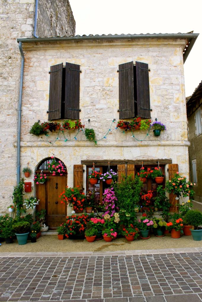 provence_france8.jpg