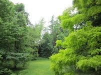 Jardins-Albert-kahn3.jpg