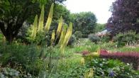 Jardin_des_plantes_2.jpg