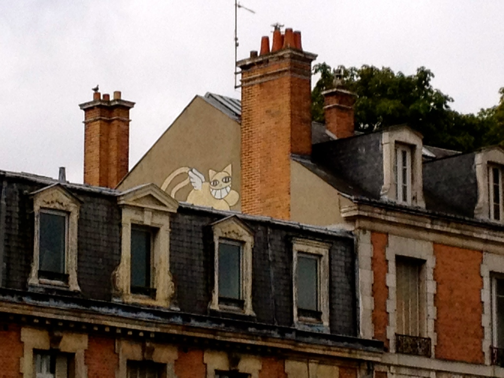 yellow_cats_orleans_france3.jpg