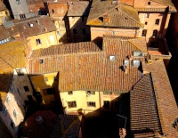 rooftops_Siena_italy3.jpg