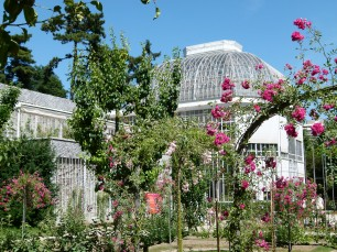 Jardins-Albert-kahn.jpg