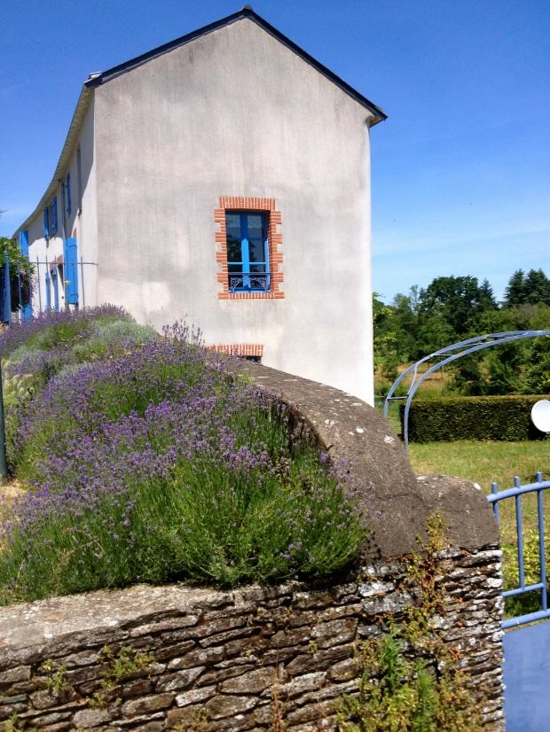 Ancenis—Oudon_France_loire_a_velo.jpg
